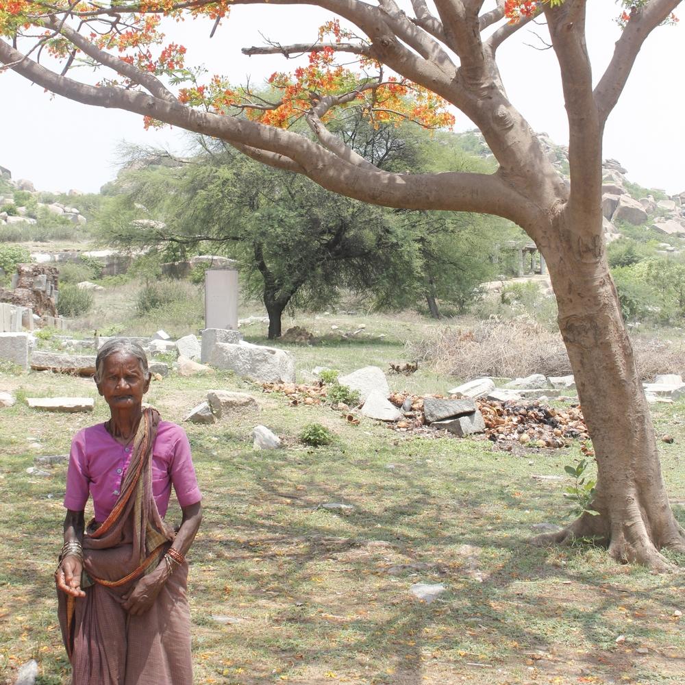 Danya - India