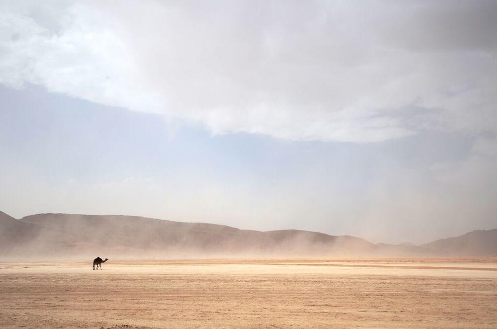 Morocco 7.jpeg