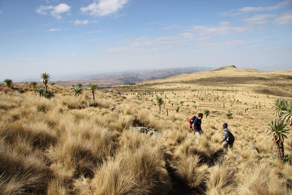 ethiopia-908842_960_720.jpg