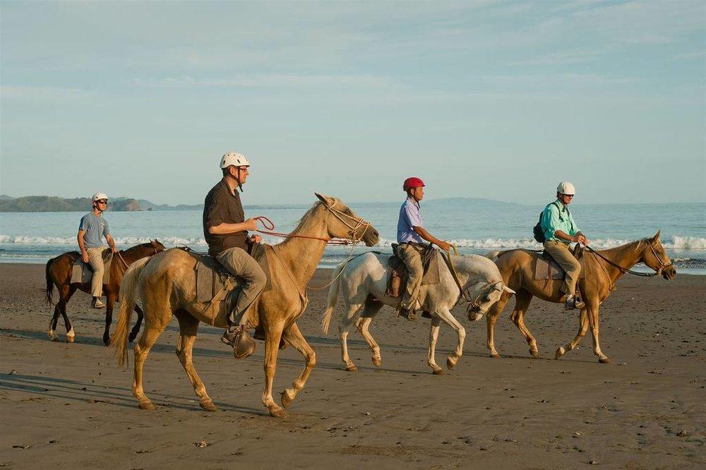 horseback-riding-2.jpg.1024x0.jpg