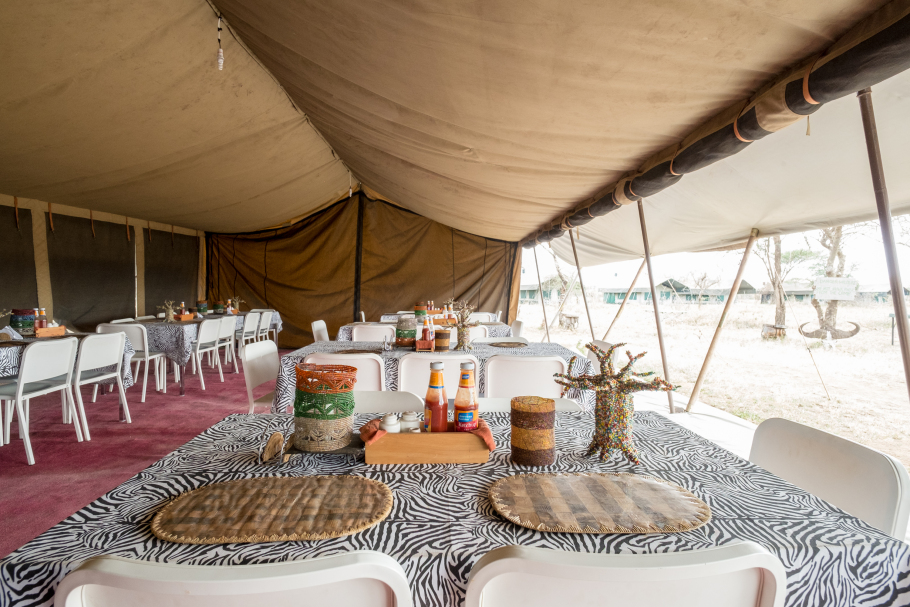 serengeti-wild-camp.jpg