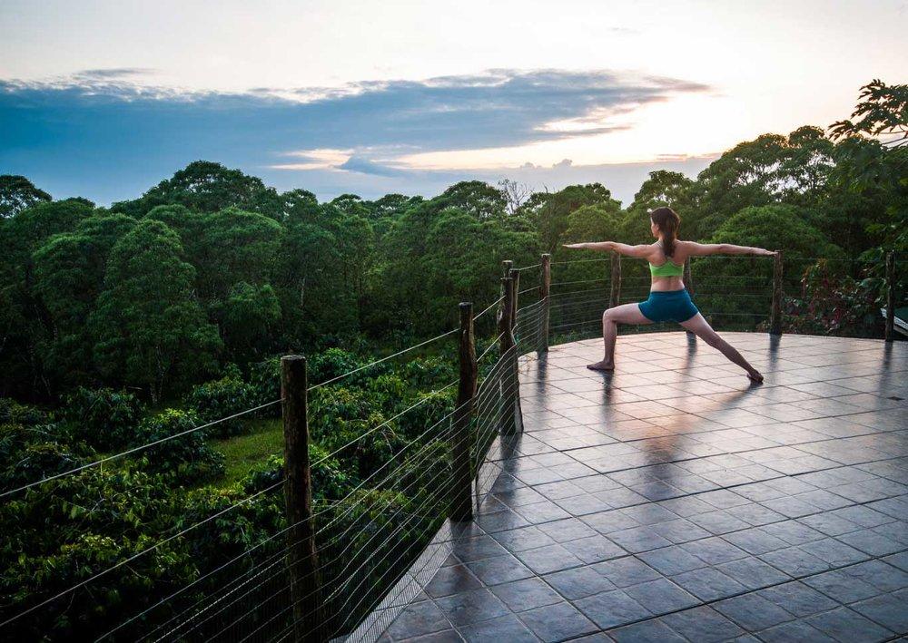 Semilla Verde, Galapagos 2.jpg