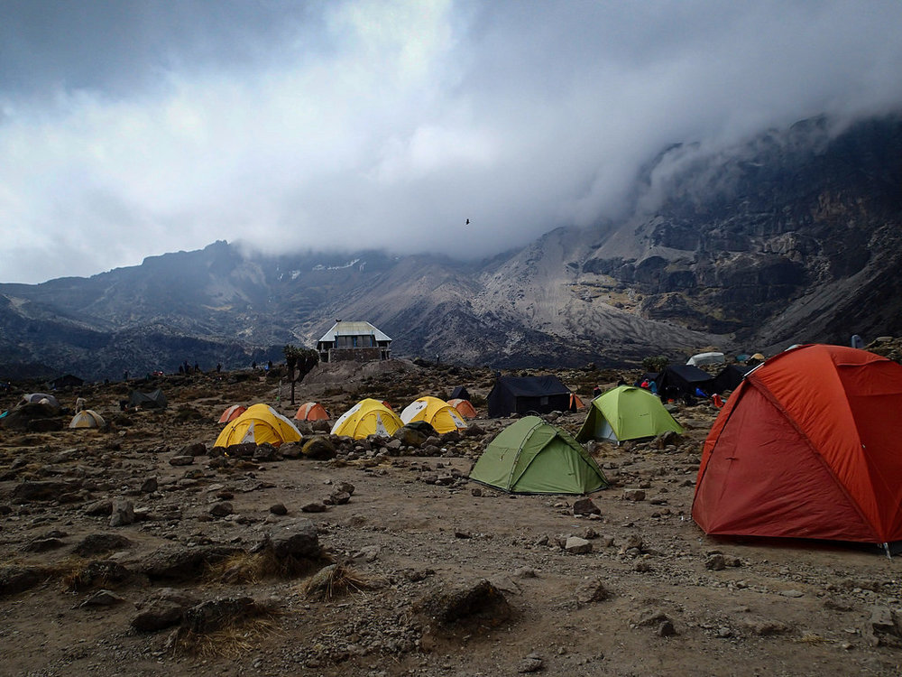 Kilimanjaro Tents.jpg