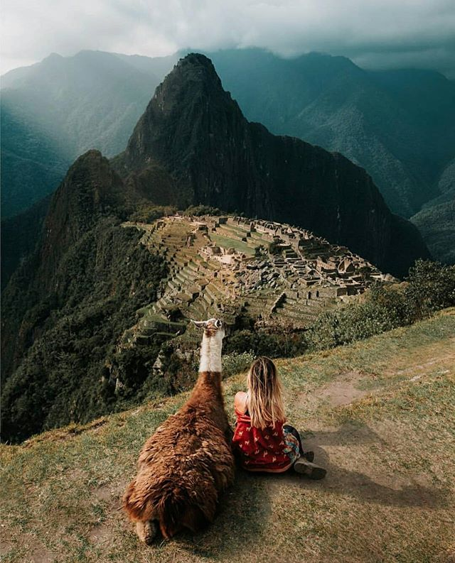 Have you ever wanted to be on top of the world?⛰Machu Picchu is a world wonder where you can walk to the top and literally feel like you are on the top of the world! Comment⛰below and tag a friend who would climb this with! Link in Bio to book 1 bring 1 friend free on our World Wonders destinations!  @eyeofshe 📍 Machu Picchu, Cusco, Peru . . . . .#bpmag @wilderness_culture #tlpicks #awesomeearth #aroundtheworldpix #viaparadise @paradise #beautifuldestinations #wanderout #whatchthisinstagood #wonderful_places #tourtheplanet #earthofficial @fantastic.colours #travelawesome #alphacollective #discoverglobe @earthpix #fantastic_earth #places_wow #wonderful_places @livingonearth #earthfocus @wonderful_places #awesome_globepix #bestvacations @awesome.photographers #awesome_photographers #awesome_earthpix #ourplanetdaily #travelfervor @discoverearth @nakedplanet #passionpassport #peru #machupicchu