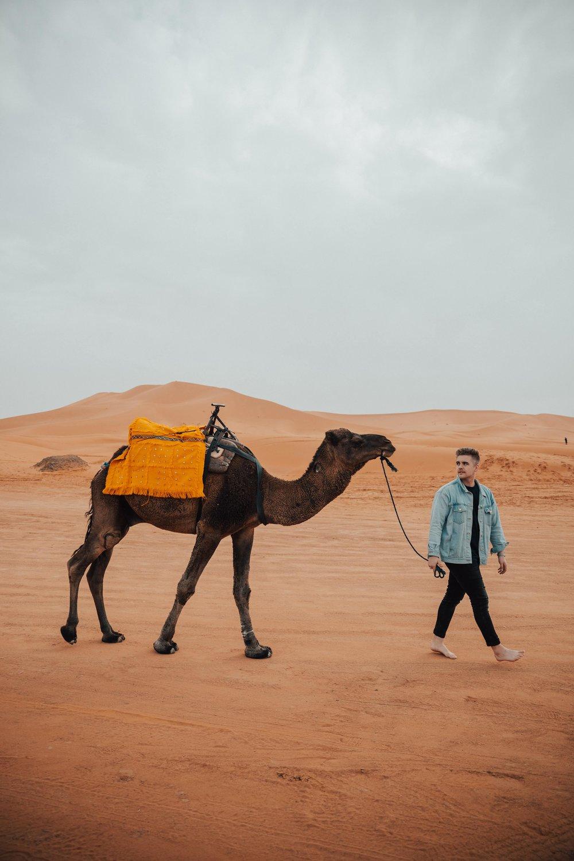 Day 4 sahara ride-50.jpg