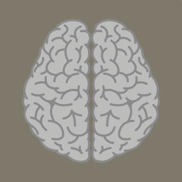 Jell-O Brain