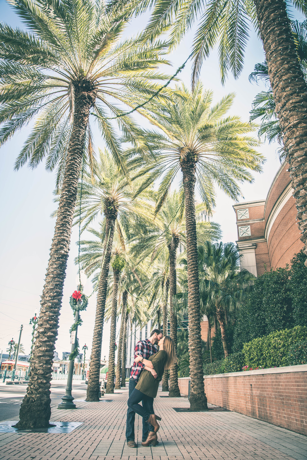 Engagements Under Palms (1 of 1).jpg