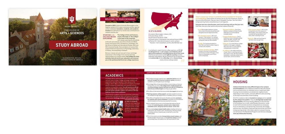IU brochure.jpg