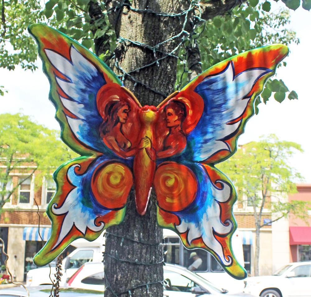 butterfly_2014.JPG