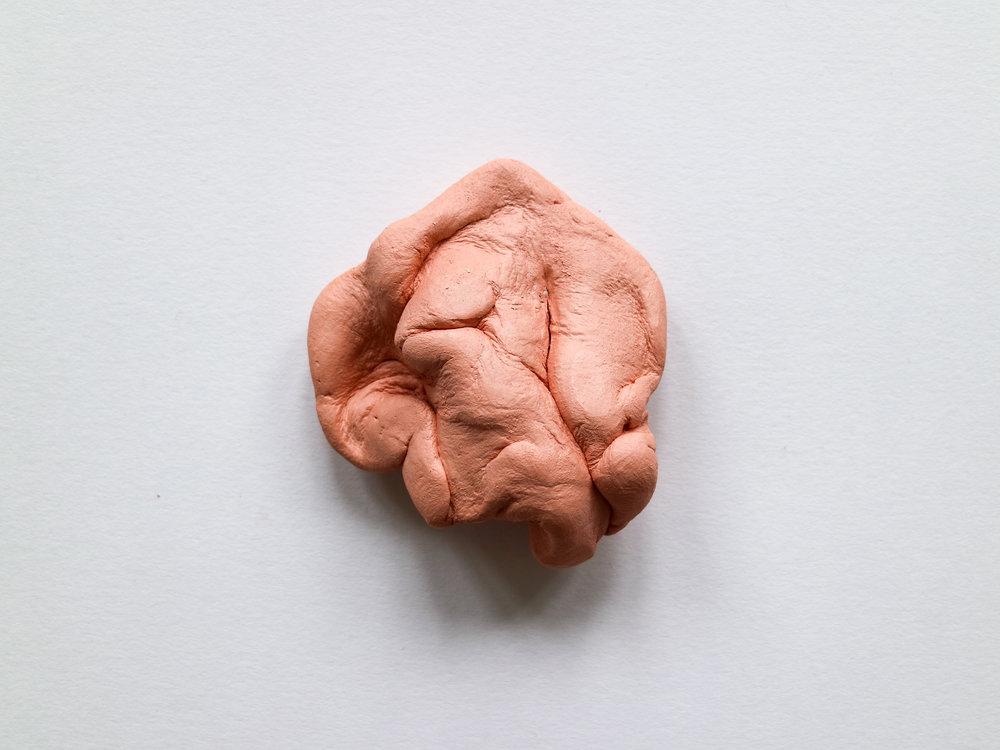 Muscle I-8.jpg