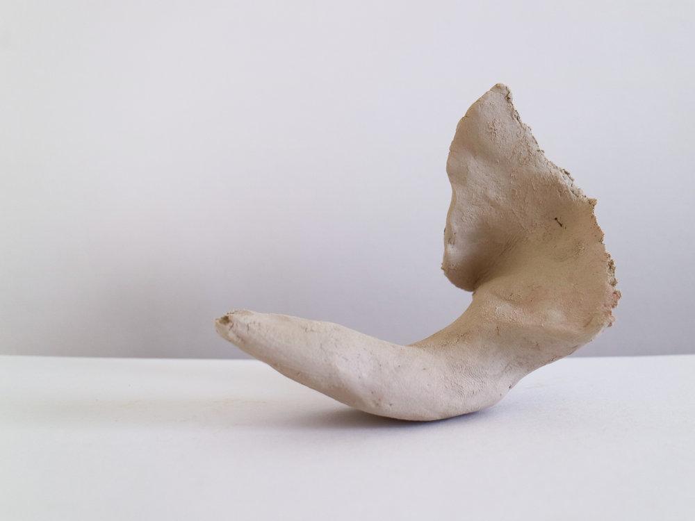 Bone V-4.jpg