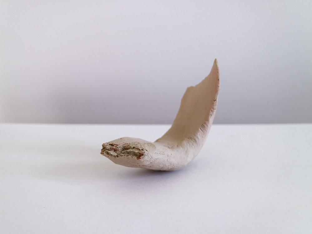 Bone V-12.jpg