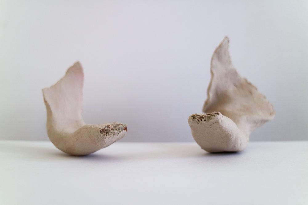 Bone V.jpg
