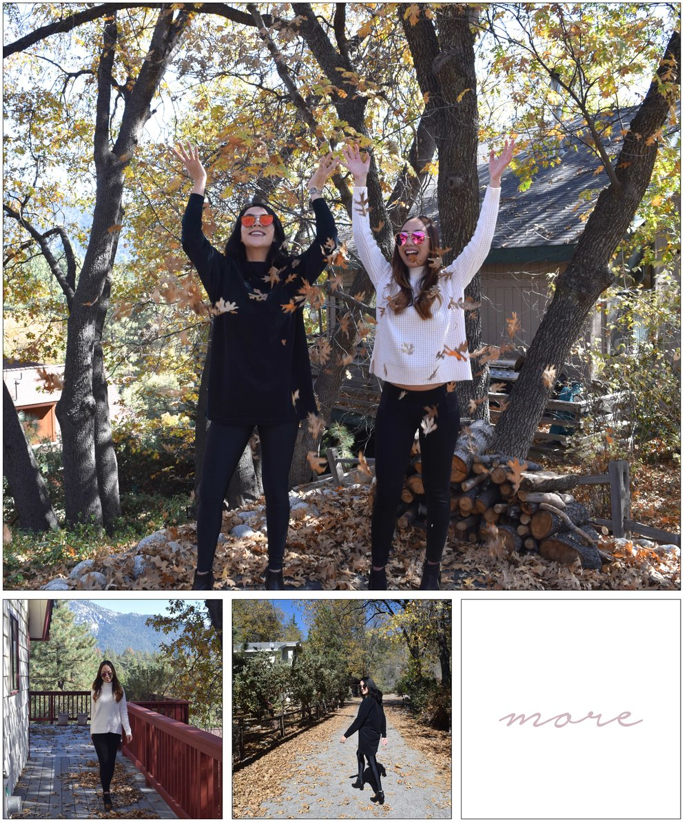 Right before the holidays we went on a roadtrip to Idyllwild...click on the image to see our full blog post!