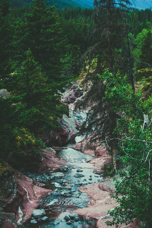 Waterton Lakes National Park - Alberta