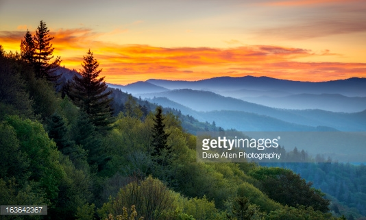 Photo by Dave Allen Photography/iStock / Getty Images