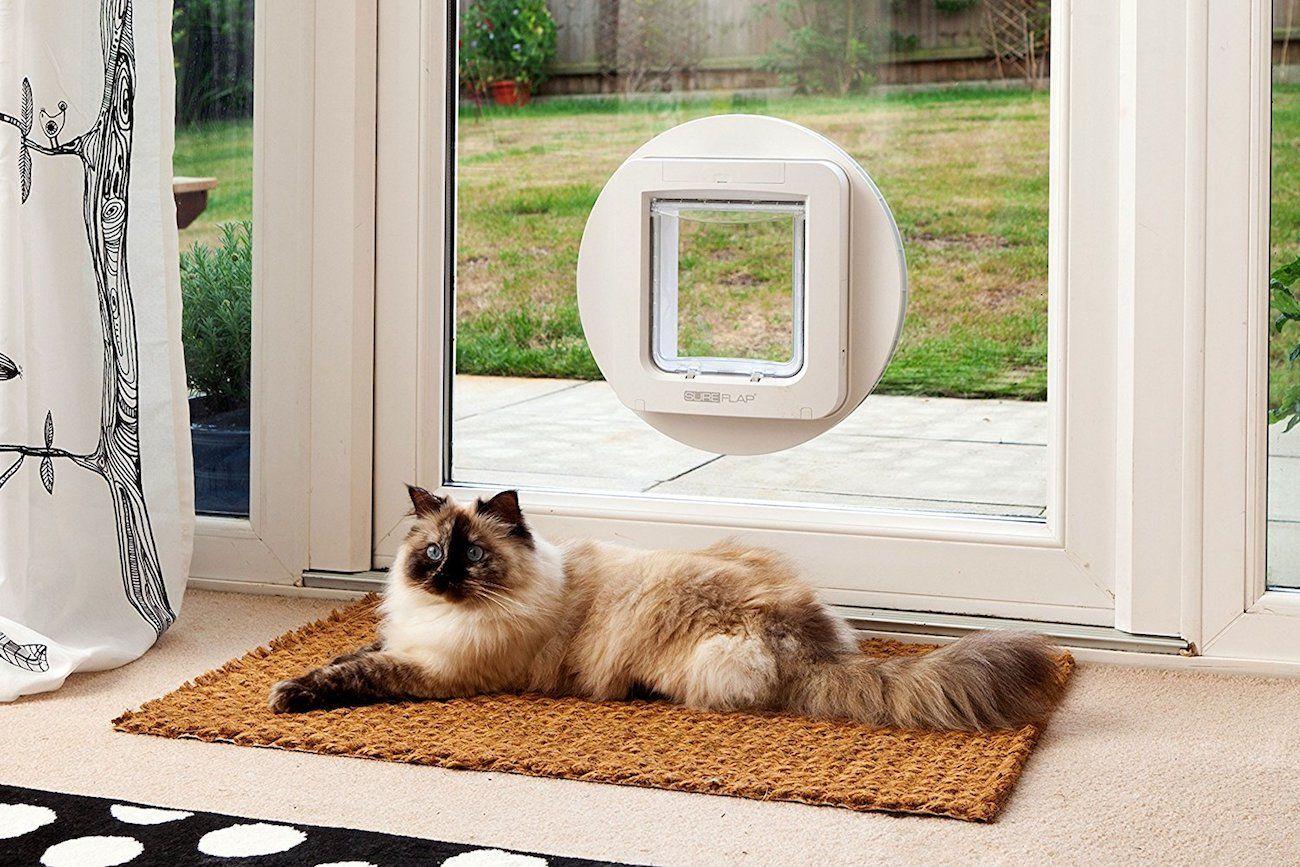 Sureflap Automatic Microchip Pet Door 02 Jpg Cat Doors