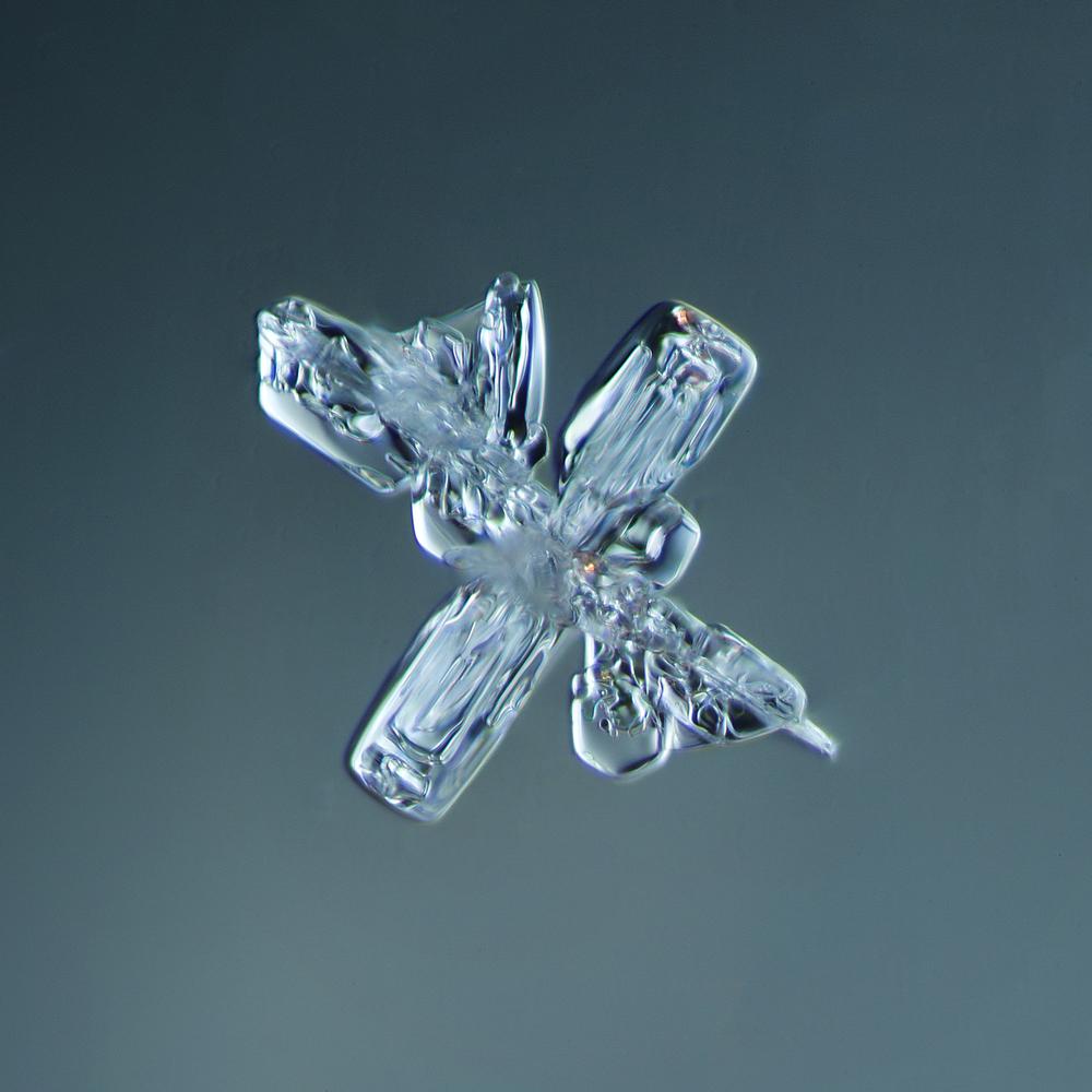 Snowflake 2014.02.09.004