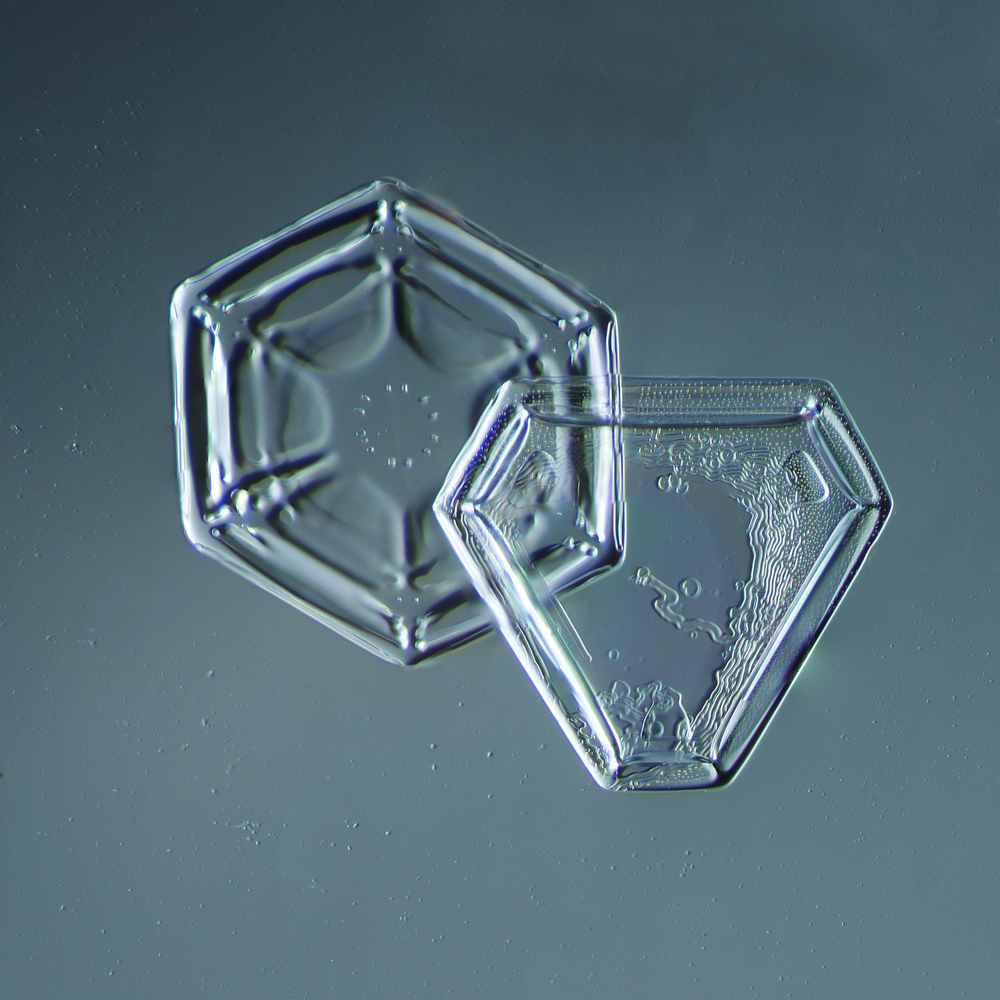 Snowflake 2014.02.09.005
