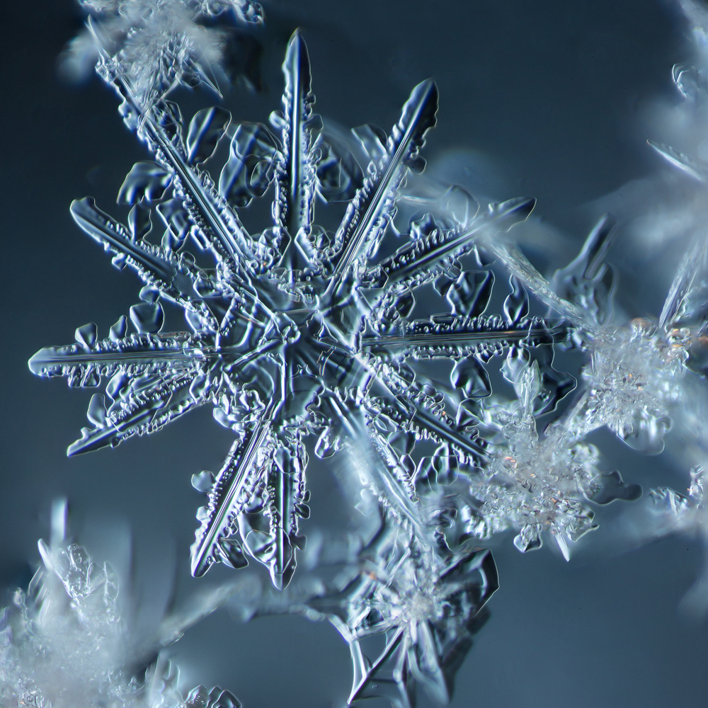 Snowflake 2014.02.09.007