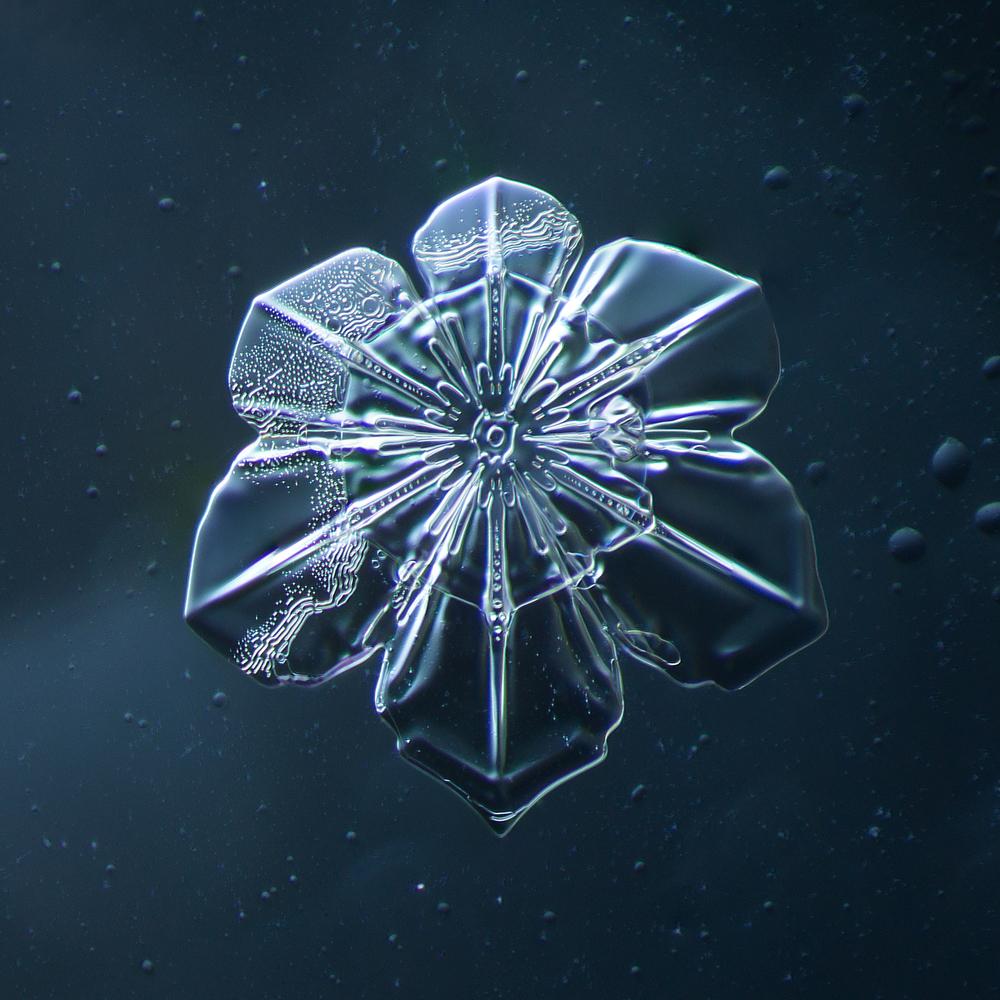 Snowflake 2014.02.09.2014