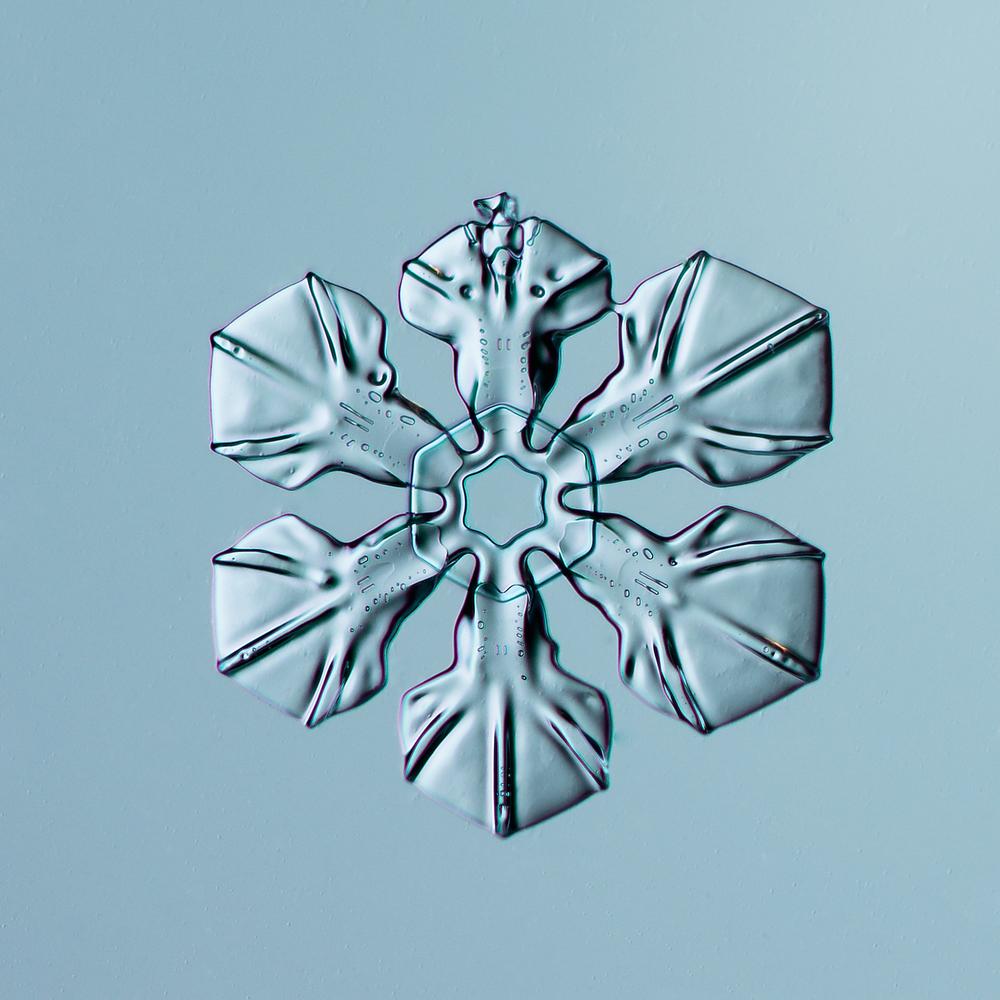 Snowflake 2014.02.16.009
