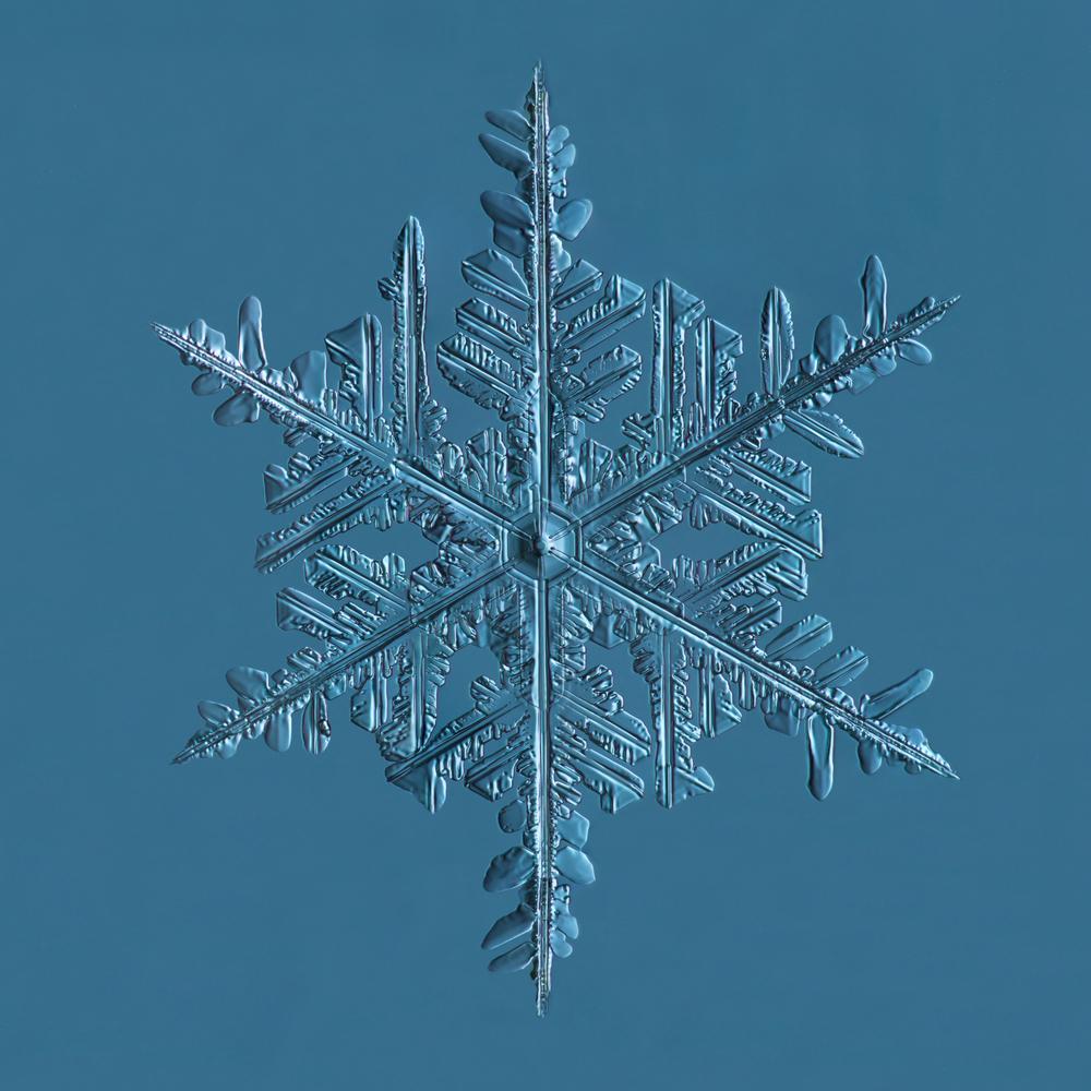 Snowflake 2015.02.20.002C