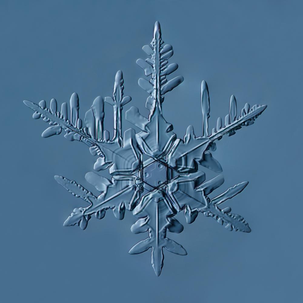 Snowflake 2015.02.22.002