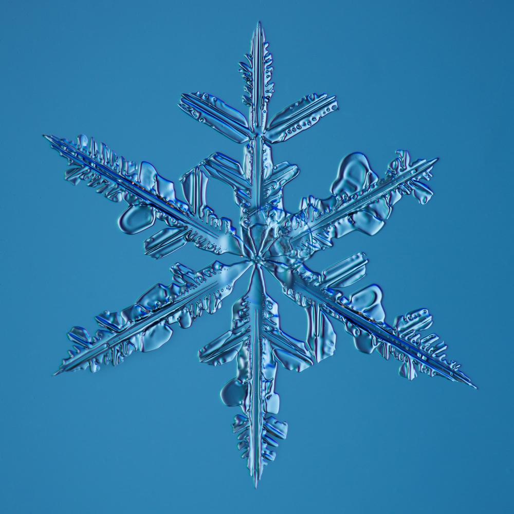Snowflake 2015.02.22.006