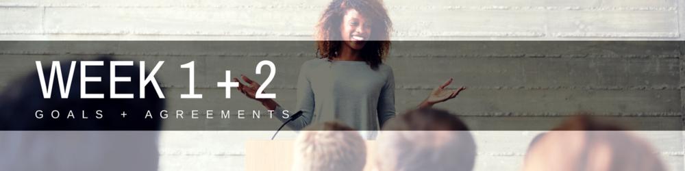 Acorn Mentoring_Week 1 + 2