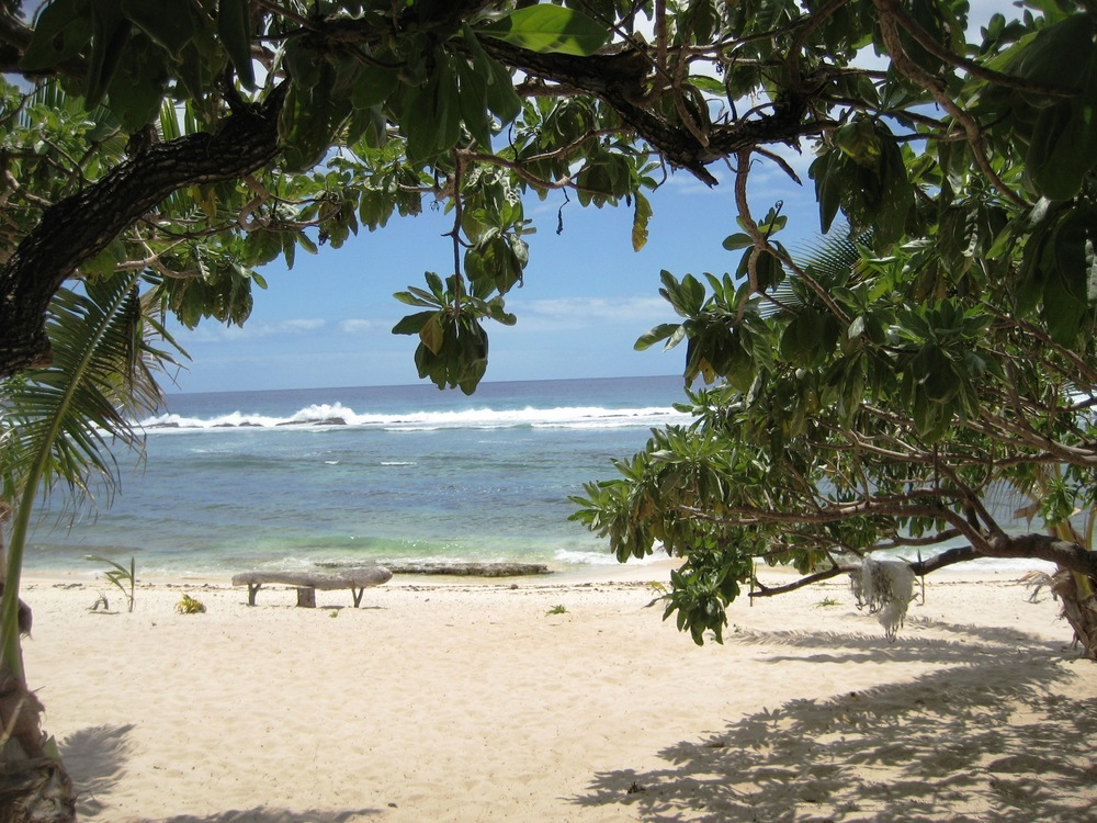 Tonga Dec 09 (124).JPG