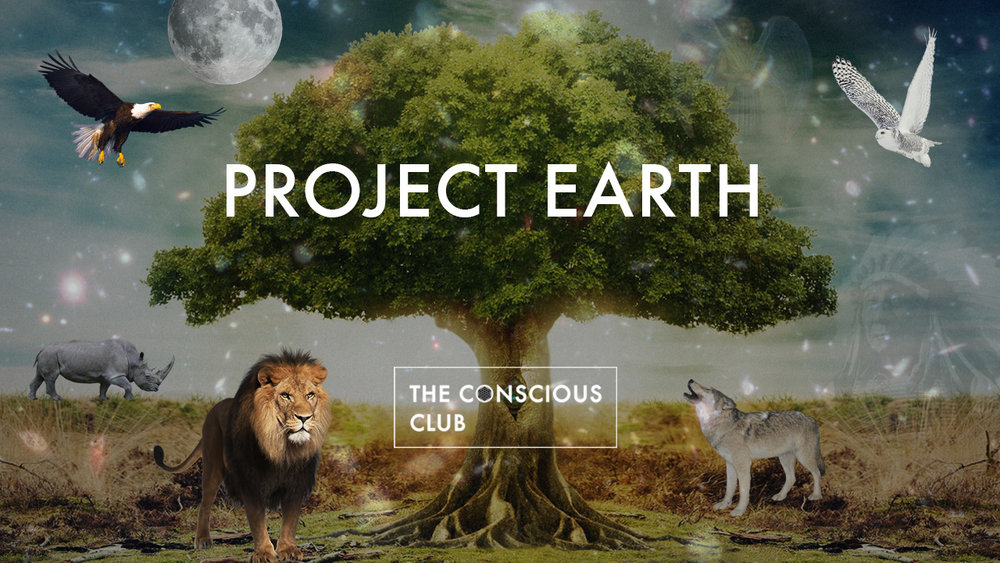 project-earthwebsite.jpg