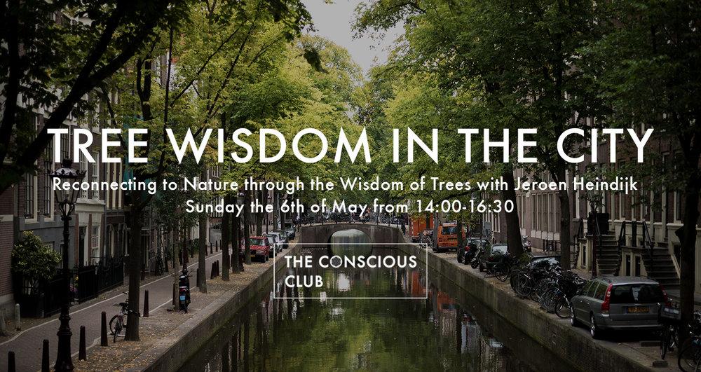 tree wisdom.jpg
