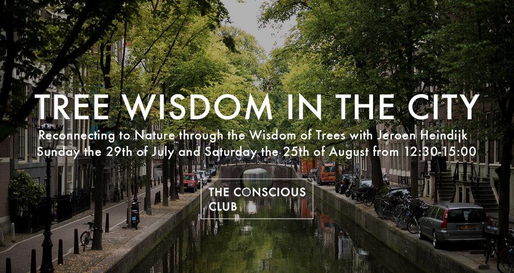 tree wisdomjuliaugustus.jpg