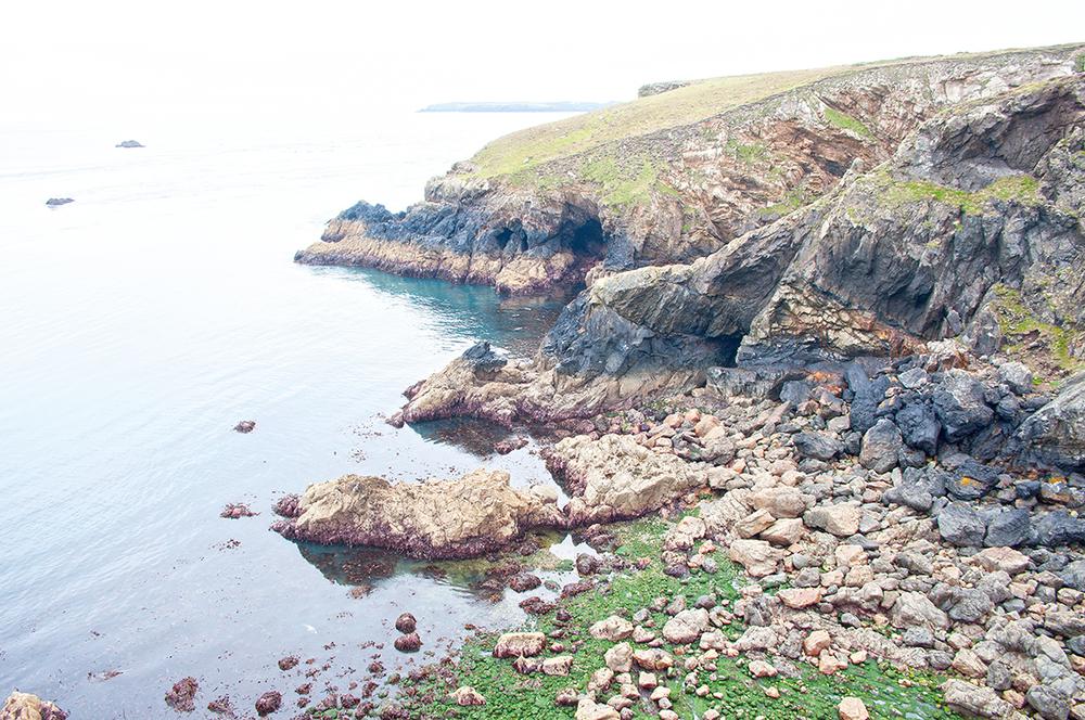 Skomer I, Pembrokeshire, Southwest Wales