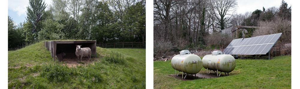 Sheep and Gas tanks, Bristol