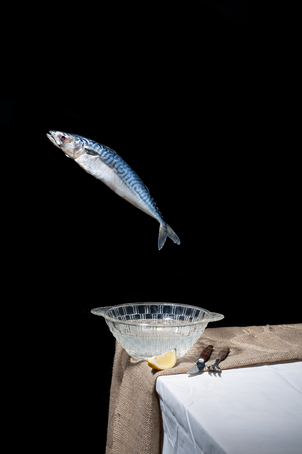 Mackerel.NEW.jpg