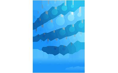 BlueVox