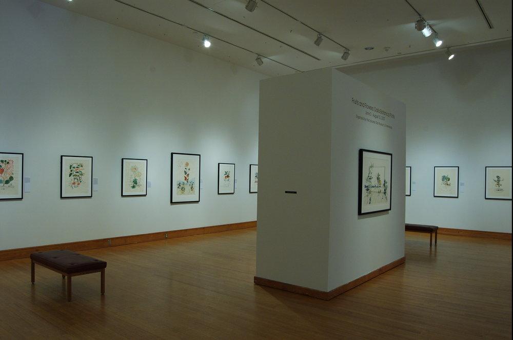 Fruits and Flowers: Dalí's Botanical Prints,  2007.