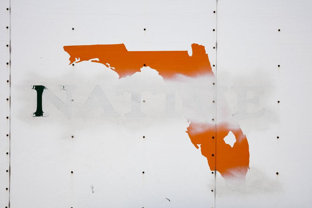 CRISTINA MOLINA AND JONATHAN TRAVIESA,  FLORIDA NATIVE,  2016, MIXED MEDIA.