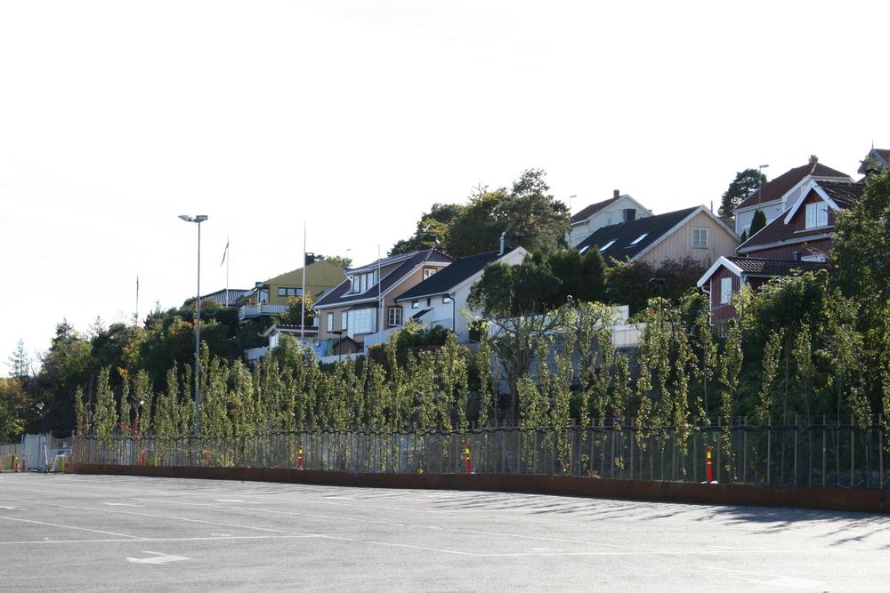Ei 80 meter lang plantekasse av skipstål gir rom for en tett planting av søyleosp, som danner skjerming mellom boligene på knausene og de store flatene i havneområdet
