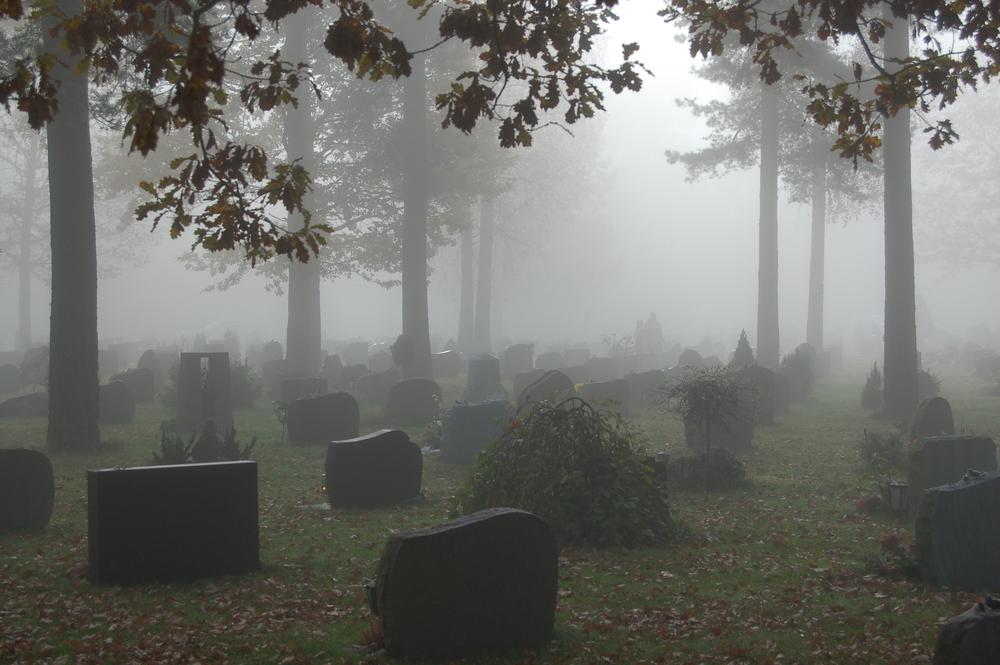 Den eldre delen av kirkegården. Graver er innpasset i furuskogen