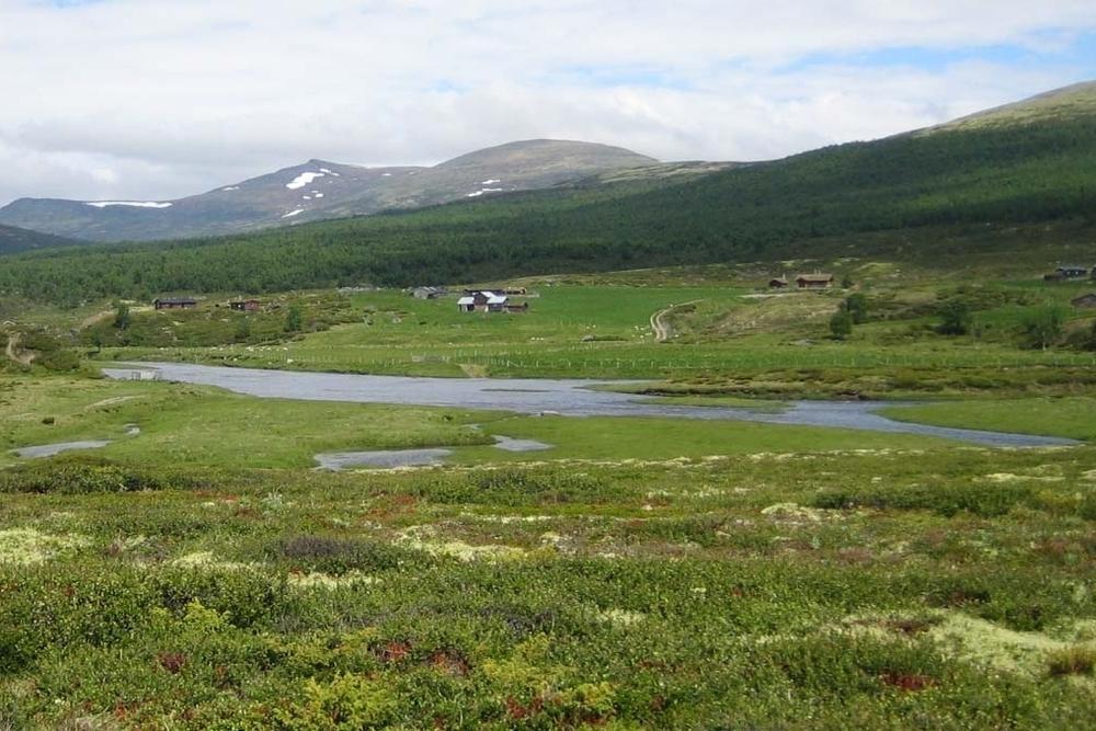Kulturlandskapet rundt Romsdalssetrene bærer preg av aktiv seterbruk.