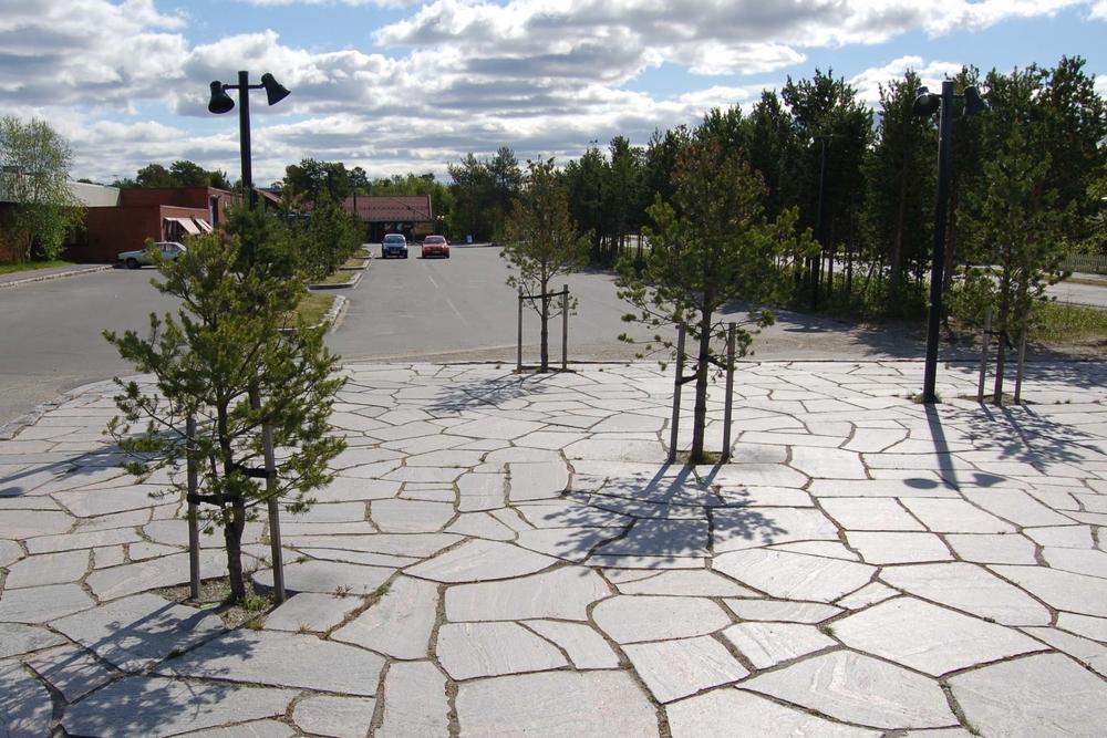 Den nye delen av Karasjok sentrum er et sted i furuskogen. Men parkering og store næringsbygg hadde tatt over og skogen var borte. I prosjektet blei furutorver tidlig flyttet inn mellom parkeringsplasser og veg. Furutrær og lokal stein danner også ramme om det nye torget.