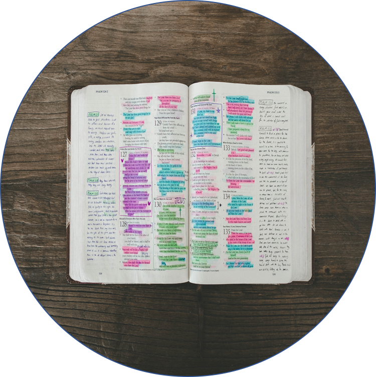 WE STUDY TO CONFORM OUR WORLD VIEW THROUGH THE LENS OF GOD'S WORD -
