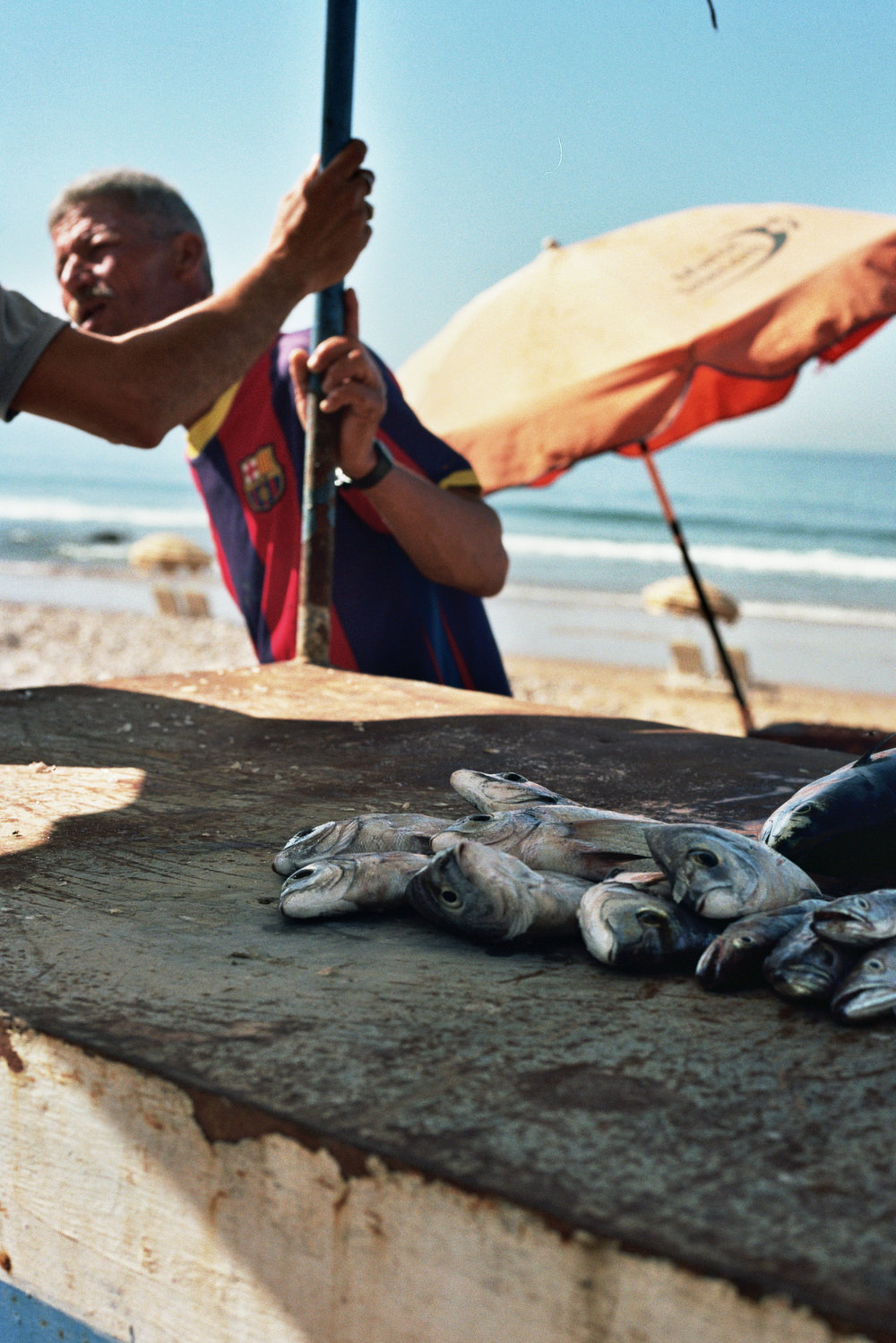 Fish stall Taghazout.jpg