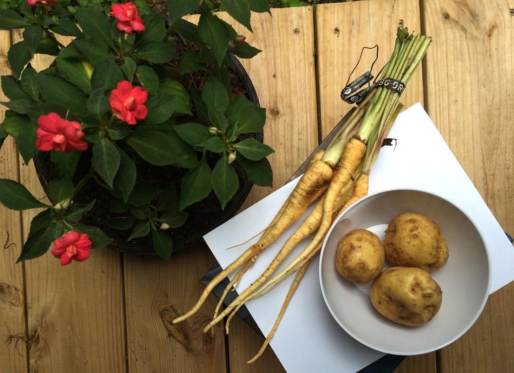 parsnip-potato-veloute-1