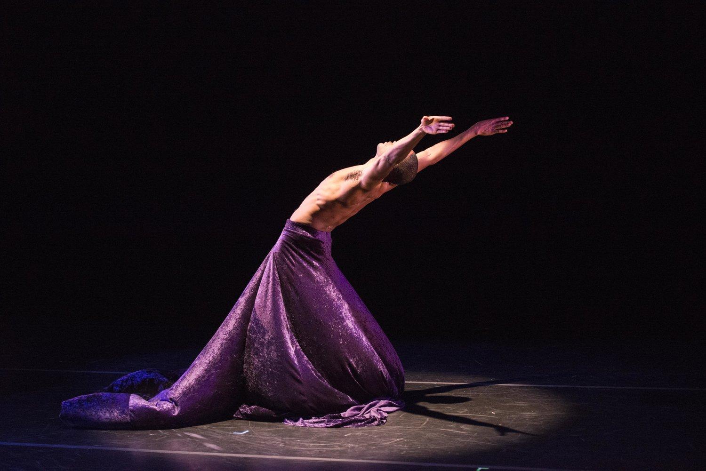 Sarasota Contemporary Dance - Contemporary dance