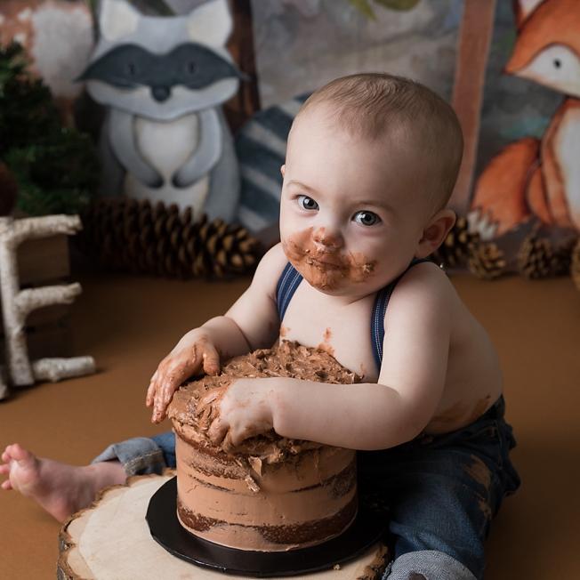 Woodland Creatures cake smash