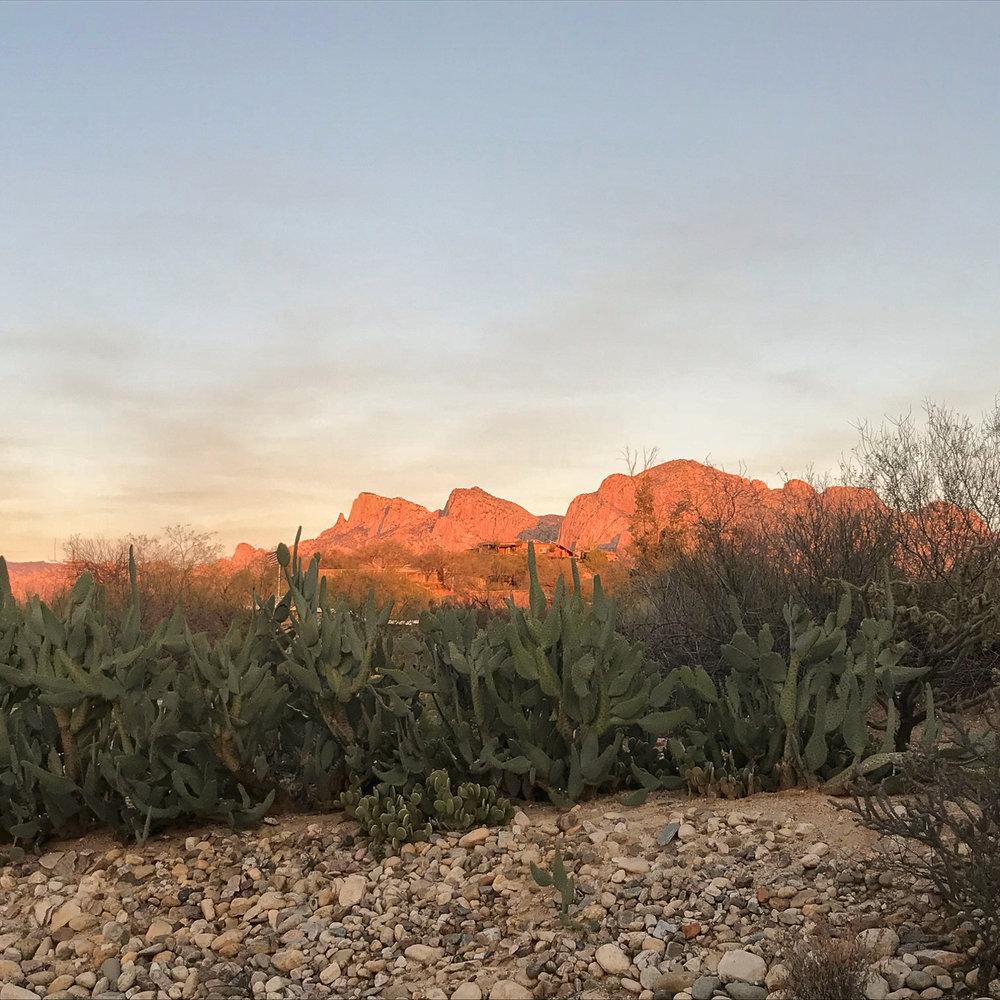 Tucson 2019 (1 of 94).jpg